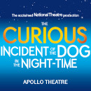 Mike Noble leads new West End cast of NT's Curious Incident