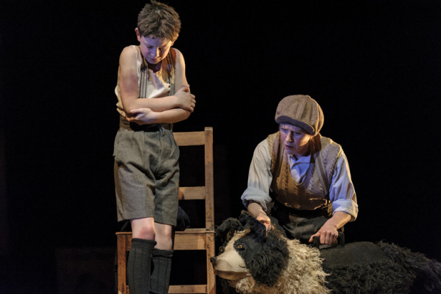 <p>Alex Taylor-McDowall (William) and Elisa de Grey (Puppeteer for Sammy the dog)</p><br />© Dan Tsantilis
