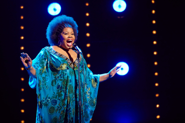 <p>Amber Riley in <em>Dreamgirls</em></p><br />© Brinkhoff - Moegenburg