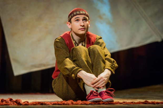 <p>Andrei Costin  in <em>The Kite Runner</em></p><br />© Robert Workman