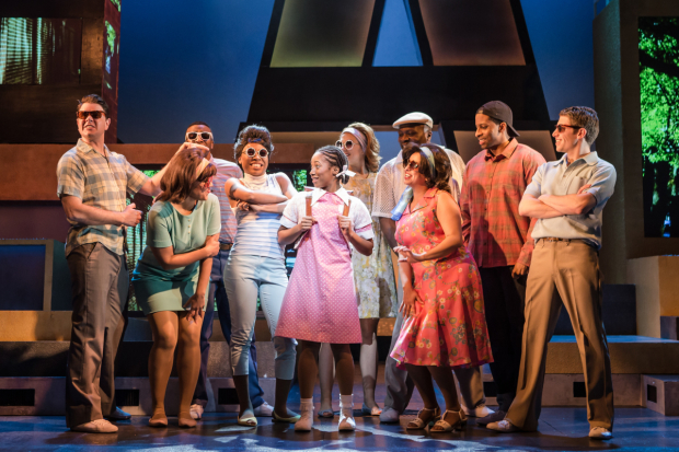 <p>Cast of <em>The Bubbly Black Girl Sheds Her Chameleon Skin</em></p><br />© Scott Rylander