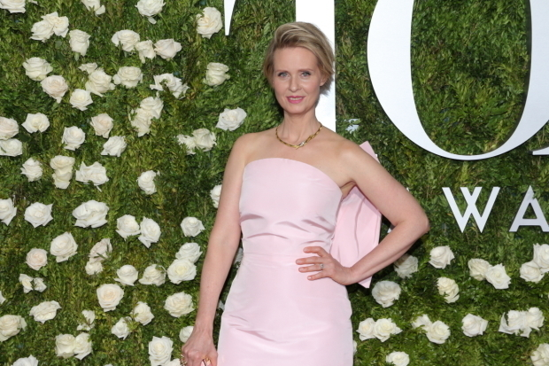 <p>Cynthia Nixon</p><br />© David Gordon