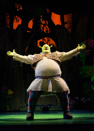 <p>Dean Chisnall as Shrek</p><br />© Helen Maybanks
