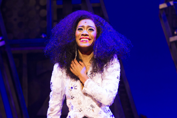 <p>Lucy St Louis (Diana Ross)</p><br />© Dan Wooller for WhatsOnStage