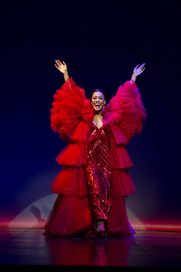 <p>Lucy St. Louis (Diana Ross) in <em>Motown the Musical </em></p><br />© Alastair Muir