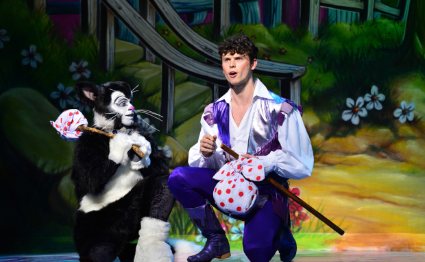 <p>Lukus Alexander as Eileen The Cat and Charlie Stemp as Dick Whittington</p><br />© Paul Coltas