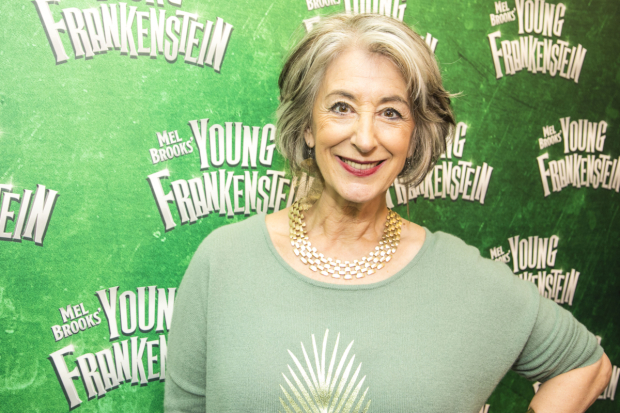 <p>Maureen Lipman</p><br />© Dan Wooller for WhatsOnStage