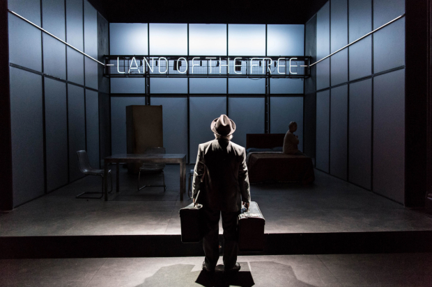 <p>Nicholas Woodeson in <em>Death of a Salesman</em></p>