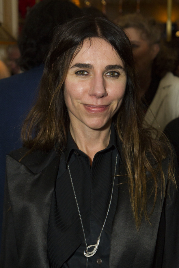 <p>PJ Harvey</p><br />© Dan Wooller for WhatsOnStage