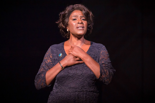 <p>Sharon D Clarke in <em>Caroline or Change</em></p><br />(c) Marc Brenner
