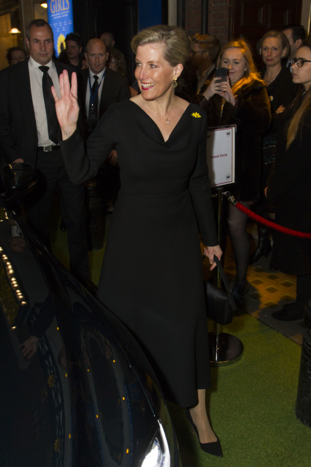 <p>Sophie Wessex</p><br />© Dan Wooller for WhatsOnStage