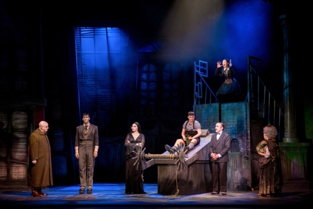 <p>The cast of <em>The Addams Family</em></p><br />© Matt Martin