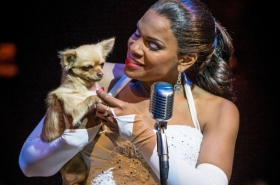 First look at Audra McDonald in Lady Day at Emerson's Bar and Grill