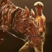 War Horse extends to 2016, new casting announced