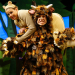 The Gruffalo celebrates fifteen years on stage
