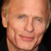 Ed Harris and Amy Madigan to star in Buried Child in the West End