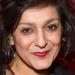 Casting announced for premiere of Meera Syal's Anita and Me