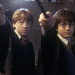 Royal Albert Hall to screen second Harry Potter film accompanied by live orchestra