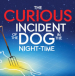 National confirms full dates for Curious Incident of the Dog in the Night-time tour