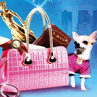 <em>Legally Blonde</em> in new Leicester Curve season