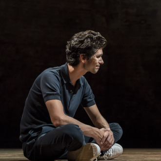 Were critics for or Against Ben Whishaw's Almeida performance?